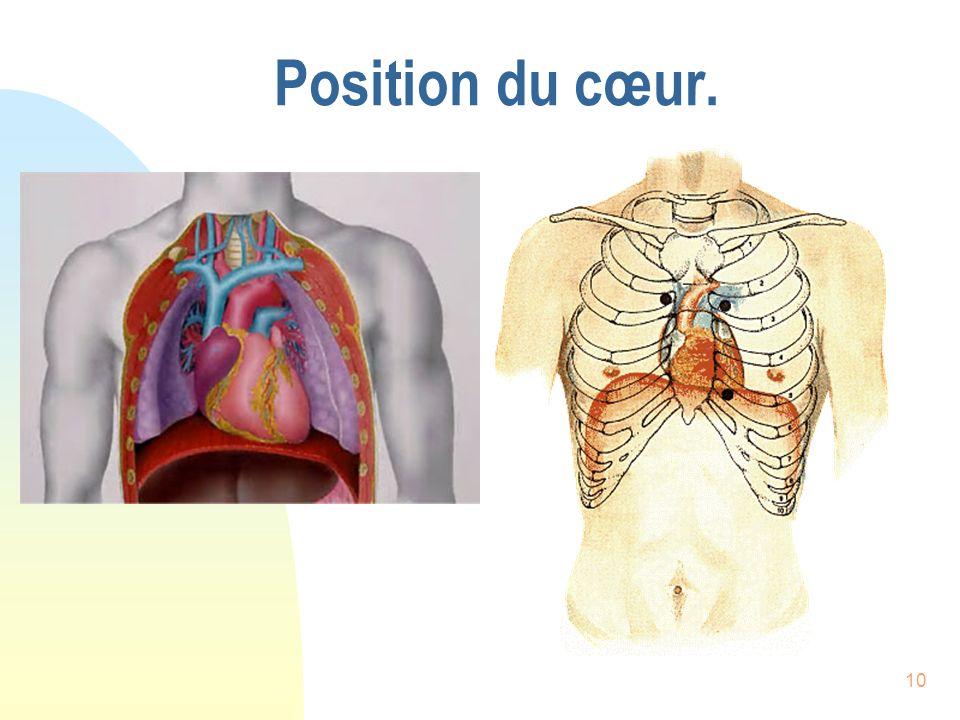 10 Position du cœur.