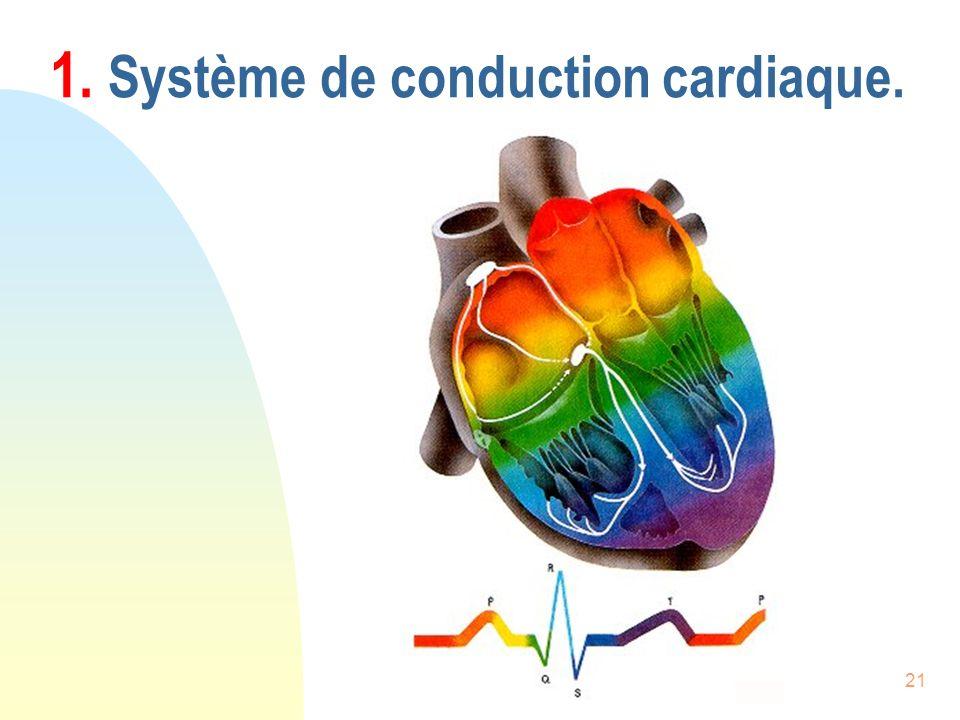 21 1. Système de conduction cardiaque.