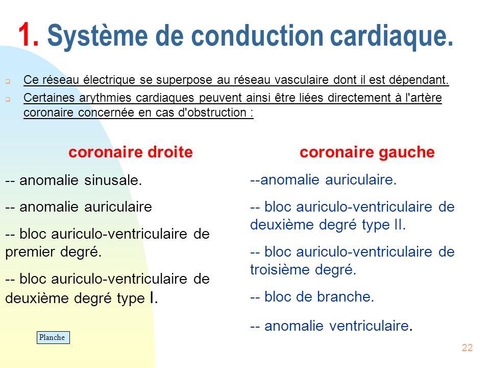 22 1. Système de conduction cardiaque. Ce réseau électrique se superpose au réseau vasculaire dont il est dépendant. Certaines arythmies cardiaques pe