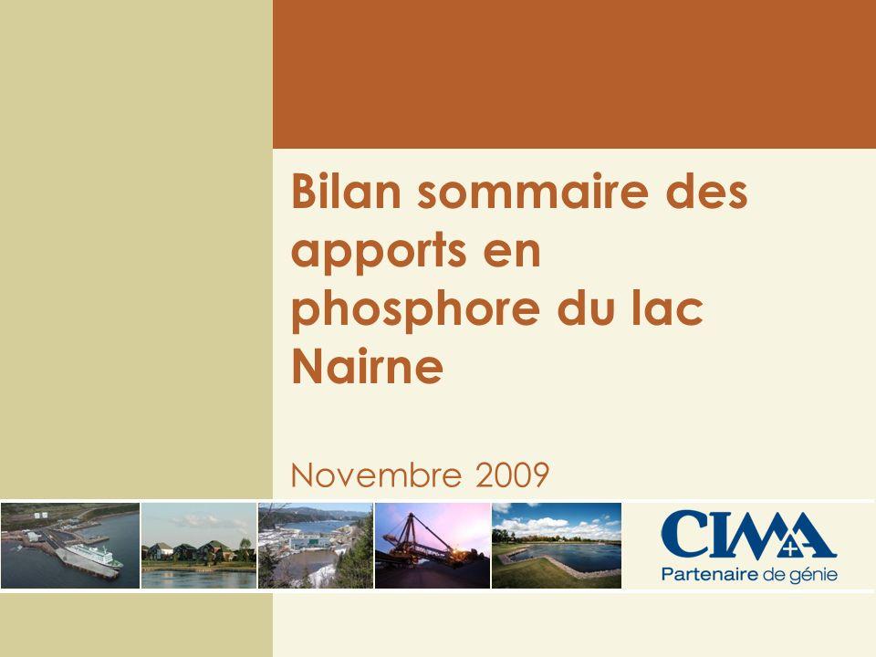 Bilan sommaire des apports en phosphore du lac Nairne Novembre 2009