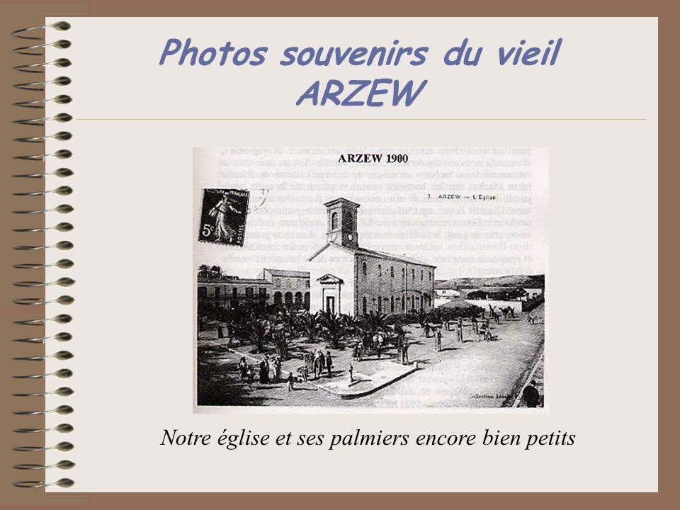 Photos souvenirs du vieil ARZEW Notre église et ses palmiers encore bien petits