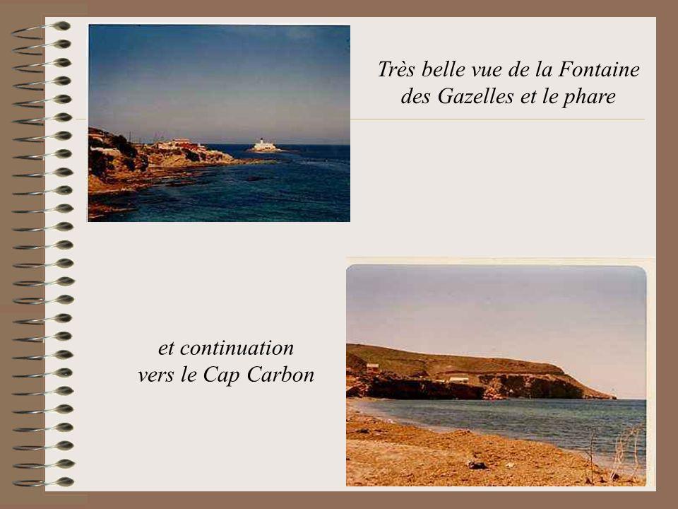 Très belle vue de la Fontaine des Gazelles et le phare et continuation vers le Cap Carbon