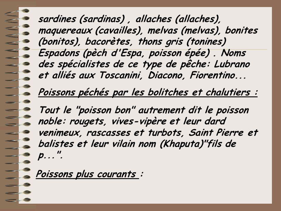 sardines (sardinas), allaches (allaches), maquereaux (cavailles), melvas (melvas), bonites (bonitos), bacorètes, thons gris (tonines) Espadons (pèch d