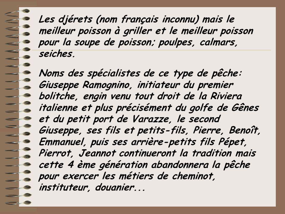 Les djérets (nom français inconnu) mais le meilleur poisson à griller et le meilleur poisson pour la soupe de poisson; poulpes, calmars, seiches. Noms