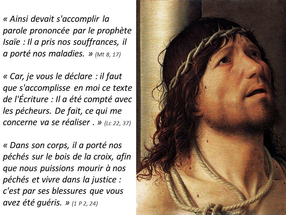 « Ainsi devait s'accomplir la parole prononcée par le prophète Isaïe : Il a pris nos souffrances, il a porté nos maladies. » (Mt 8, 17) « Car, je vous