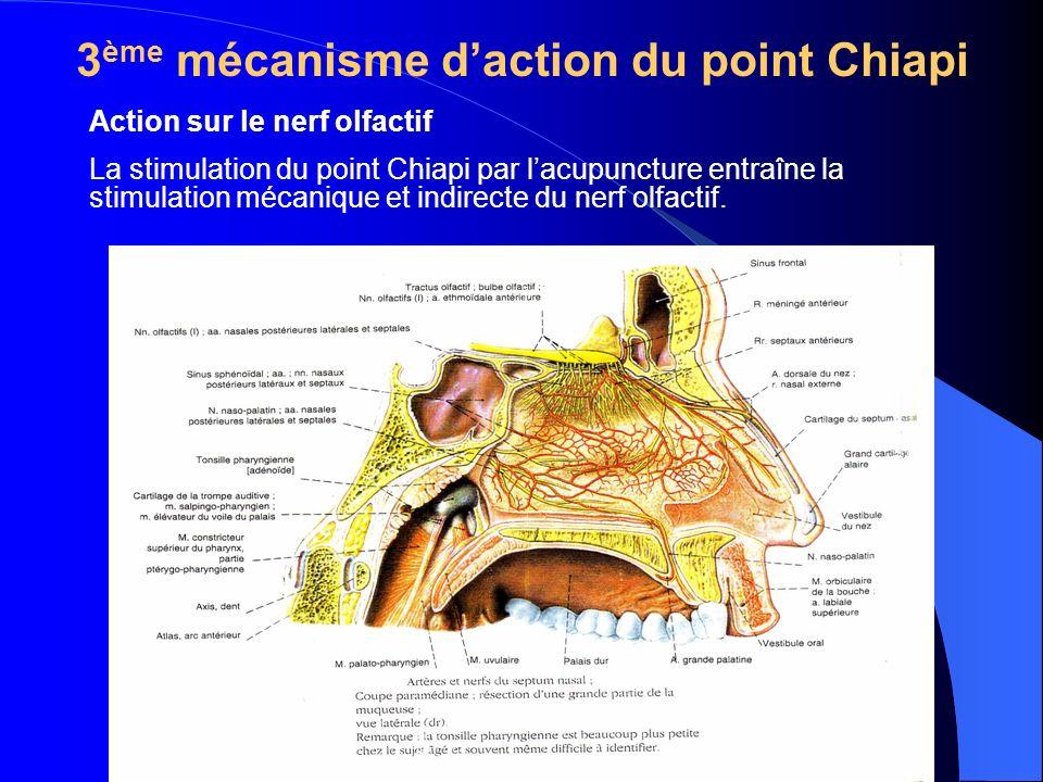 Action sur le nerf olfactif La stimulation du point Chiapi par lacupuncture entraîne la stimulation mécanique et indirecte du nerf olfactif.
