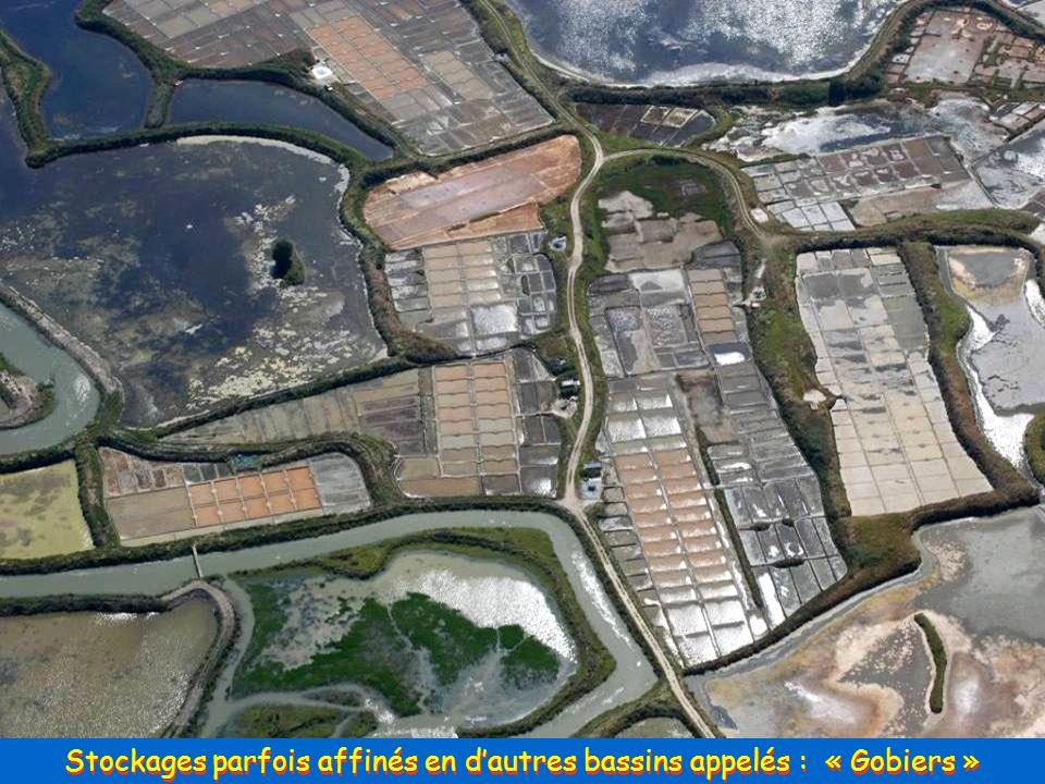 Les Etiers, Bassins de Stockage, et Bassins de Concentration …