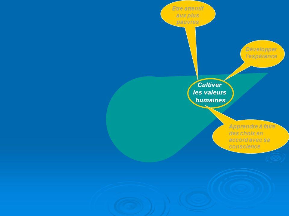 B2i - Niveau Collège Brevet Informatique et Internet 29 compétences à valider Domaine 1 : Sapproprier un environnement informatique de travail (6 items) Domaine 1 : Sapproprier un environnement informatique de travail (6 items) Domaine 2 : Adopter une attitude responsable (7 items) Domaine 2 : Adopter une attitude responsable (7 items) Domaine 3 : Créer, produire, traiter, exploiter des données (7 items) Domaine 3 : Créer, produire, traiter, exploiter des données (7 items) Domaine 4 : Sinformer, se documenter (5 items) Domaine 4 : Sinformer, se documenter (5 items) Domaine 5 : Communiquer, échanger (4 items) Domaine 5 : Communiquer, échanger (4 items)