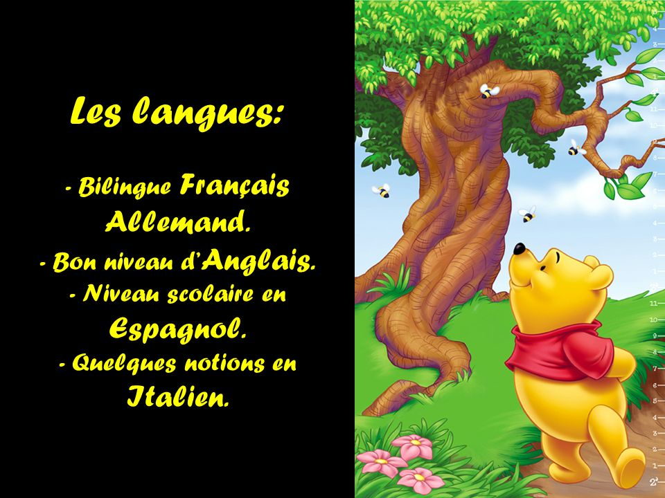 Les langues: - Bilingue Français Allemand. - Bon niveau d Anglais. - Niveau scolaire en Espagnol. - Quelques notions en Italien.