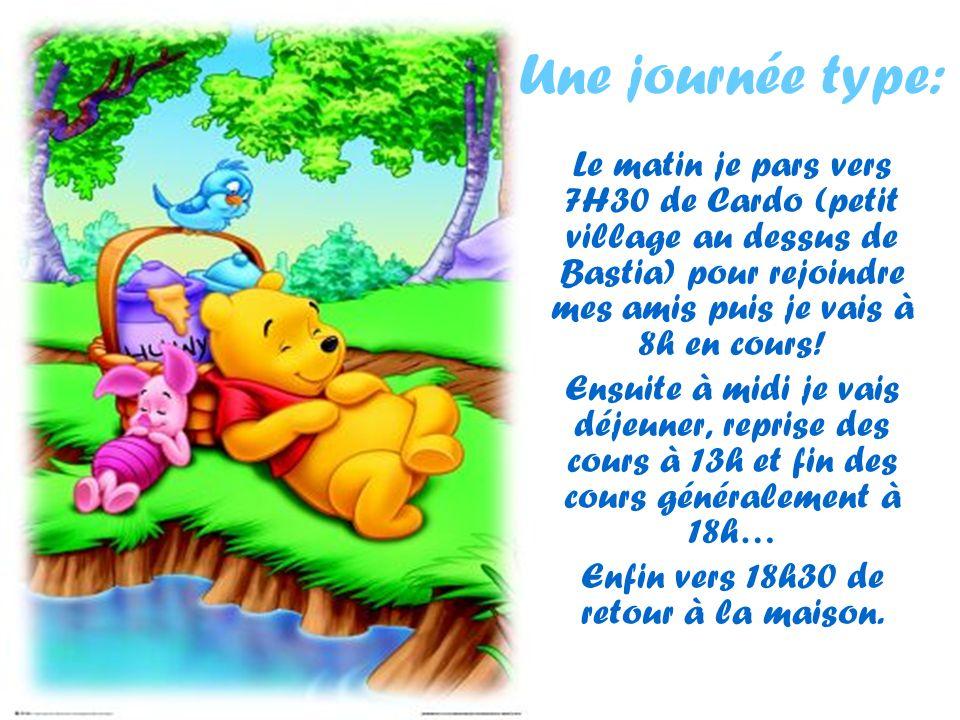 Une journée type: Le matin je pars vers 7H30 de Cardo (petit village au dessus de Bastia) pour rejoindre mes amis puis je vais à 8h en cours! Ensuite