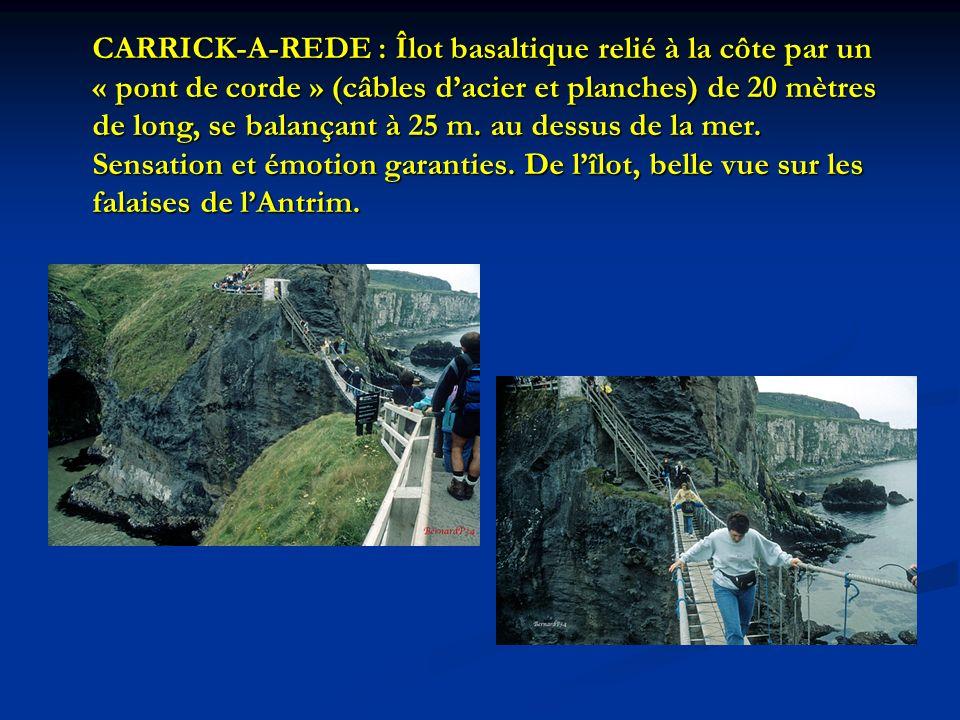 CARRICK-A-REDE : Îlot basaltique relié à la côte par un « pont de corde » (câbles dacier et planches) de 20 mètres de long, se balançant à 25 m. au de