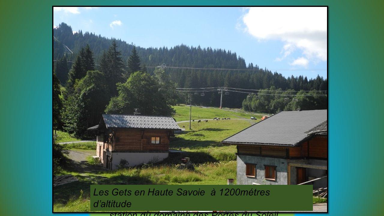 Les Gets en Haute Savoie à 1200métres daltitude station du domaine des Portes du Soleil