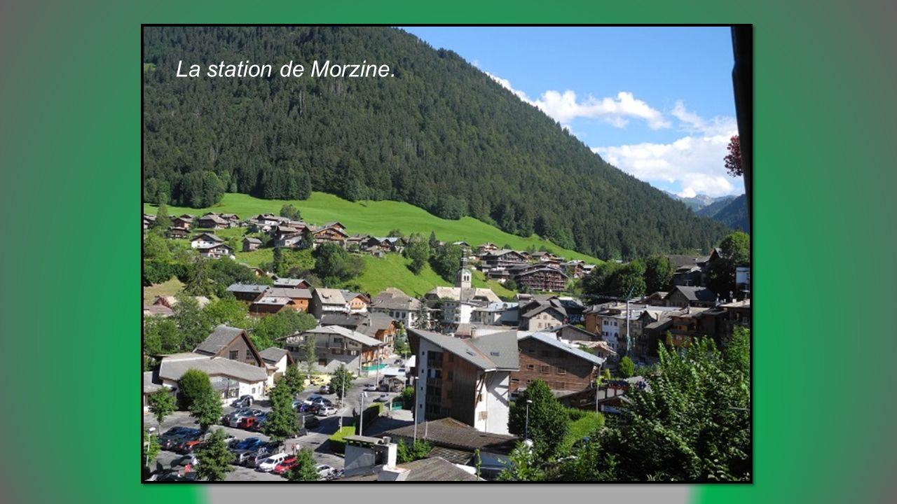 Morzine en Haute Savoie en vallée d Aulps de 1000 à 2460m