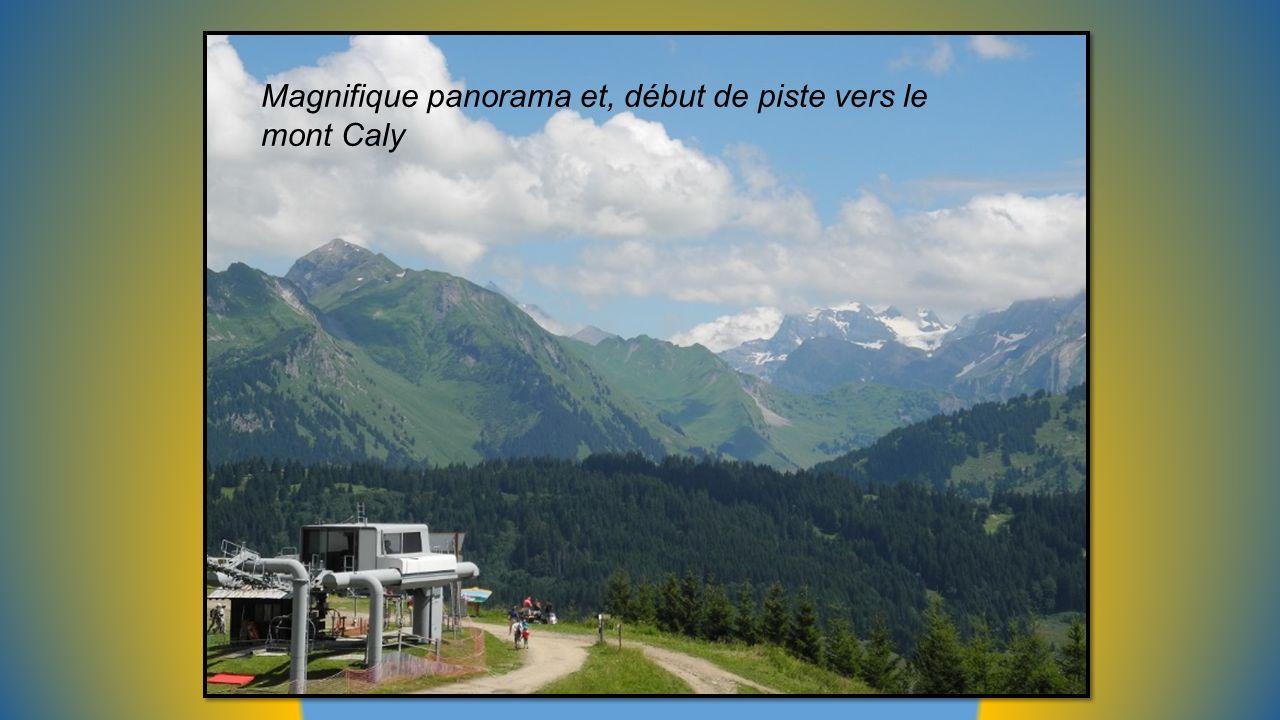 Magnifique panorama et, début de piste vers le mont Caly
