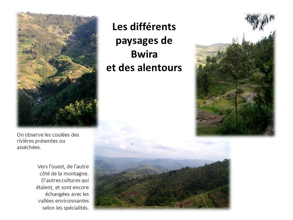 Les différents paysages de Bwira et des alentours On observe les coulées des rivières présentes ou asséchées. Vers louest, de lautre côté de la montag