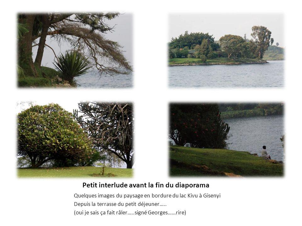 Petit interlude avant la fin du diaporama Quelques images du paysage en bordure du lac Kivu à Gisenyi Depuis la terrasse du petit déjeuner….. (oui je