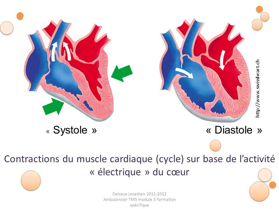 Delsaux Jonathan 2011-2012 Ambulancier TMS module 3 formation spécifique Contractions du muscle cardiaque (cycle) sur base de lactivité « électrique »