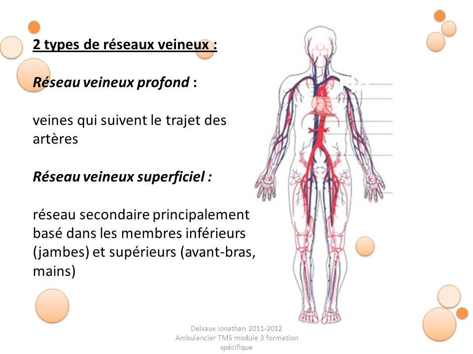 Delsaux Jonathan 2011-2012 Ambulancier TMS module 3 formation spécifique Fin… 2 types de réseaux veineux : Réseau veineux profond : veines qui suivent