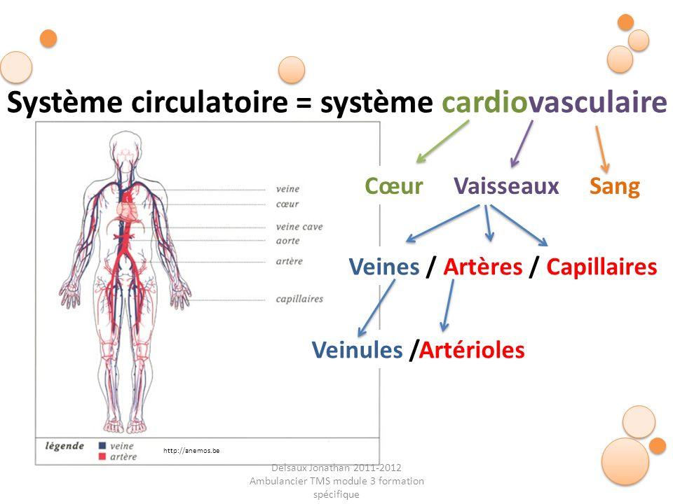 Delsaux Jonathan 2011-2012 Ambulancier TMS module 3 formation spécifique Fin… Système circulatoire = système cardiovasculaire Cœur Vaisseaux Sang Vein