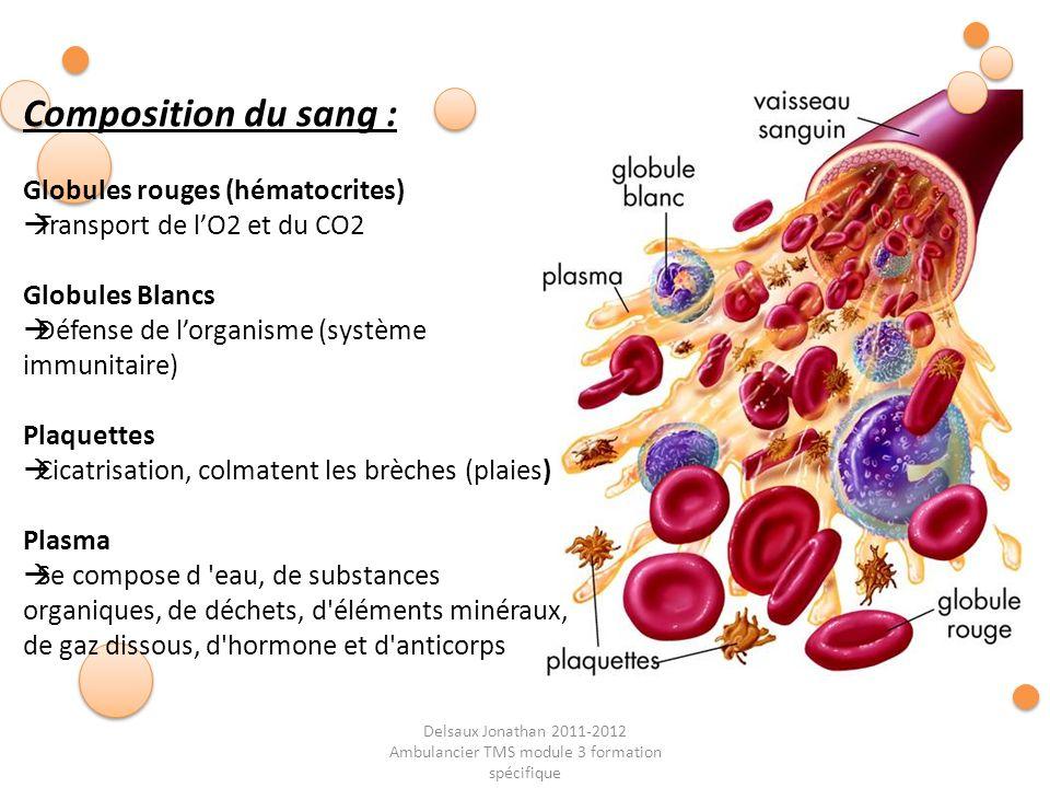 Delsaux Jonathan 2011-2012 Ambulancier TMS module 3 formation spécifique Composition du sang : Globules rouges (hématocrites) Transport de lO2 et du C