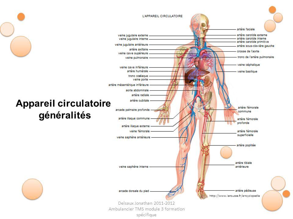 Delsaux Jonathan 2011-2012 Ambulancier TMS module 3 formation spécifique Appareil circulatoire généralités http://www.larousse.fr/encyclopedie