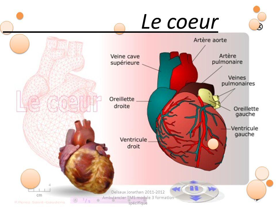 Delsaux Jonathan 2011-2012 Ambulancier TMS module 3 formation spécifique Le coeur