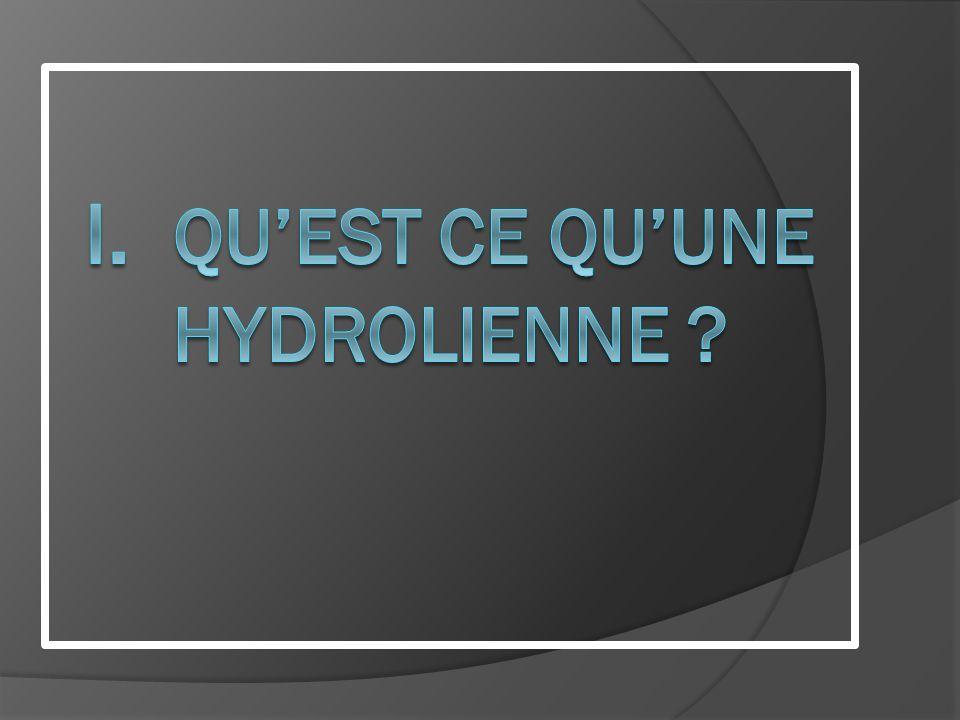 Lhydrolienne représente un potentiel important, mais qui nest pas encore suffisamment exploitée