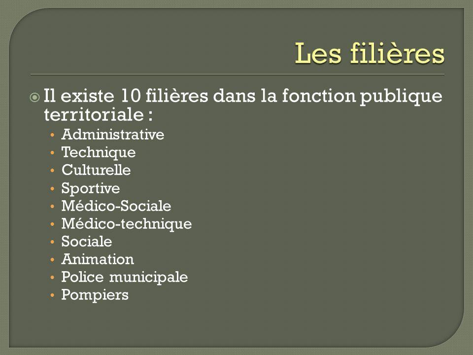 Il existe 10 filières dans la fonction publique territoriale : Administrative Technique Culturelle Sportive Médico-Sociale Médico-technique Sociale An