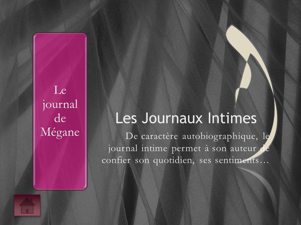 Le journal de Mégane
