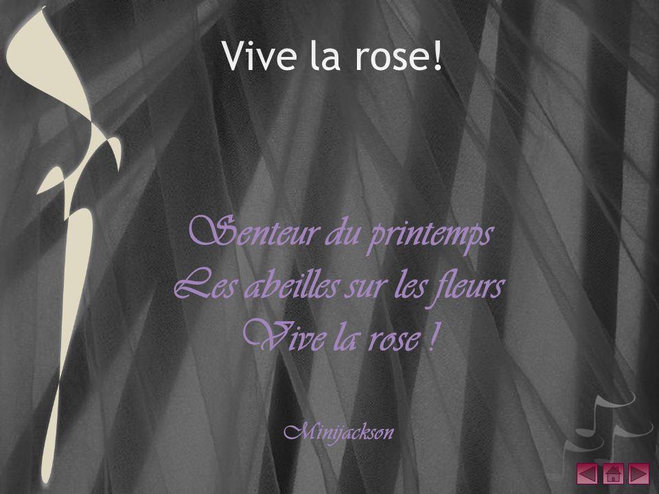 Senteur du printemps Les abeilles sur les fleurs Vive la rose ! Minijackson