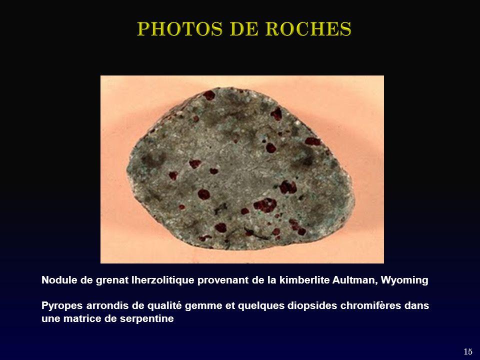 15 Nodule de grenat lherzolitique provenant de la kimberlite Aultman, Wyoming Pyropes arrondis de qualité gemme et quelques diopsides chromifères dans une matrice de serpentine