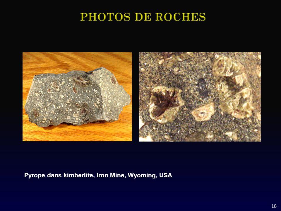18 Pyrope dans kimberlite, Iron Mine, Wyoming, USA