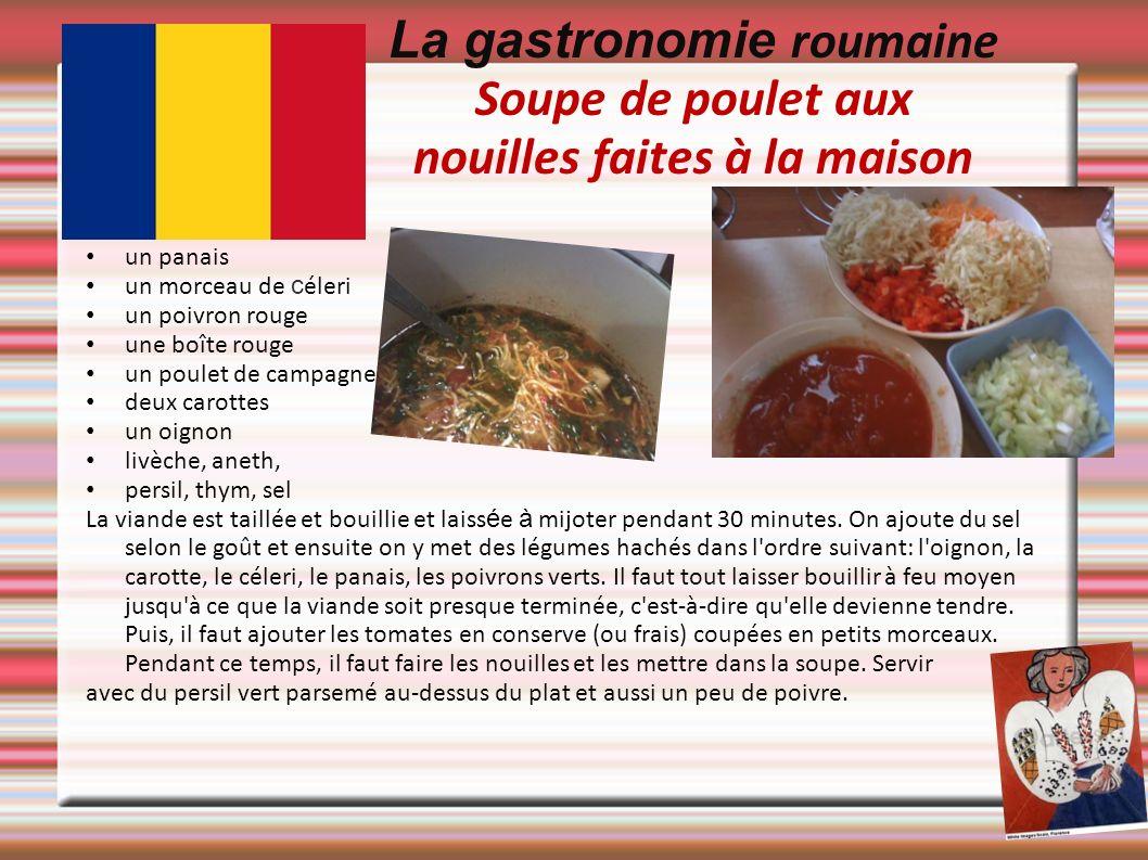 La gastronomie roumaine Soupe de poulet aux nouilles faites à la maison un panais un morceau de c éleri un poivron rouge une boîte rouge un poulet de