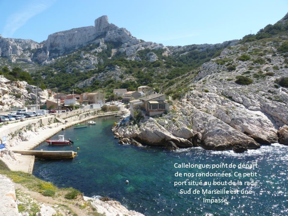 Cest dans la bonne humeur que 55 personnes de Béziers-Plaisir vont découvrir ces magnifiques Calanques de Cassis
