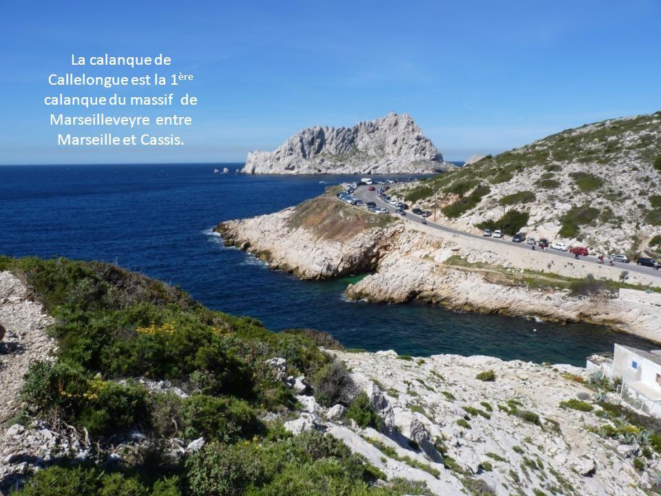Callelongue, point de départ de nos randonnées. Ce petit port situé au bout de la rade Sud de Marseille est une impasse.