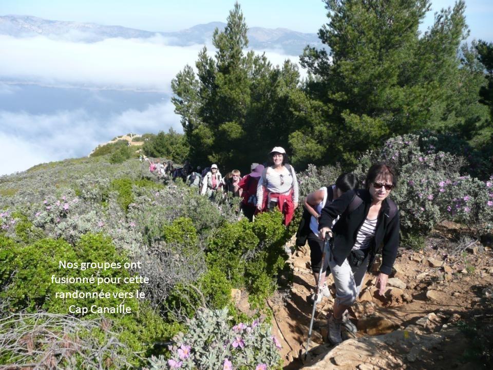 La route des Crêtes qui relie Cassis à la Ciotat offre des vues saisissantes sur la mer Méditerranée et le massif des Calanques. 4 ème jour : la route