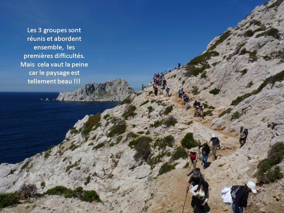La calanque de Callelongue est la 1 ère calanque du massif de Marseilleveyre entre Marseille et Cassis.