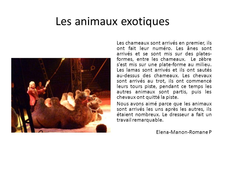 Les animaux exotiques Les chameaux sont arrivés en premier, ils ont fait leur numéro. Les ânes sont arrivés et se sont mis sur des plates- formes, ent