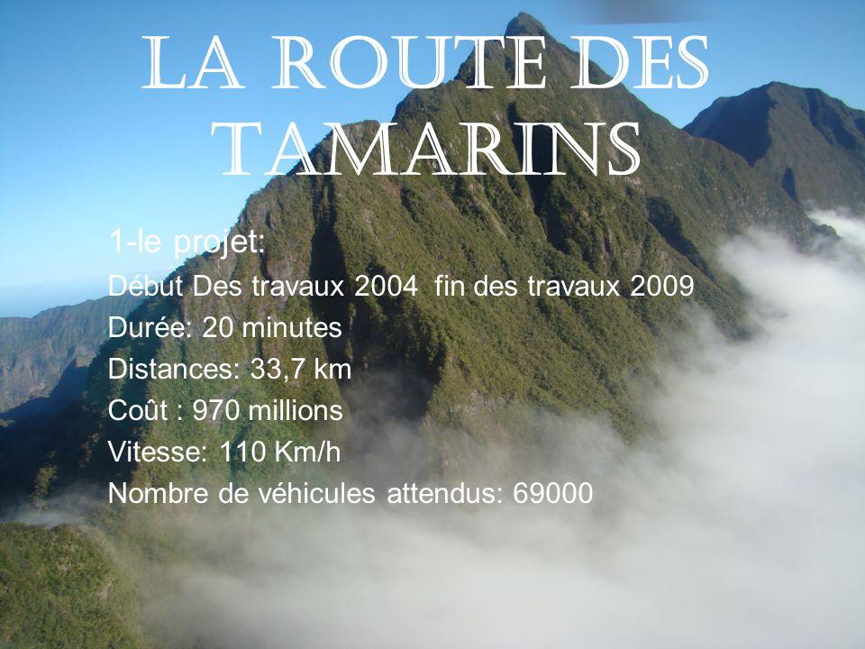 La route des tamarins 1-le projet: Début Des travaux 2004 fin des travaux 2009 Durée: 20 minutes Distances: 33,7 km Coût : 970 millions Vitesse: 110 K