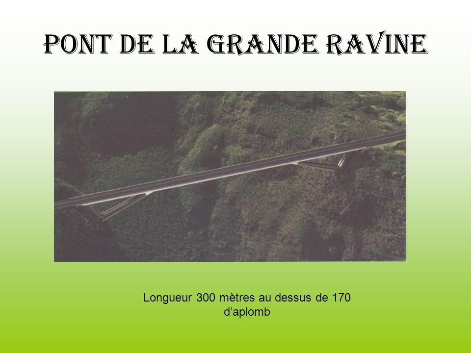 Pont de la grande ravine Longueur 300 mètres au dessus de 170 daplomb