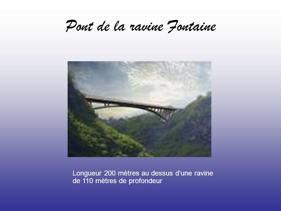 Pont de la ravine Fontaine Longueur 200 mètres au dessus dune ravine de 110 mètres de profondeur