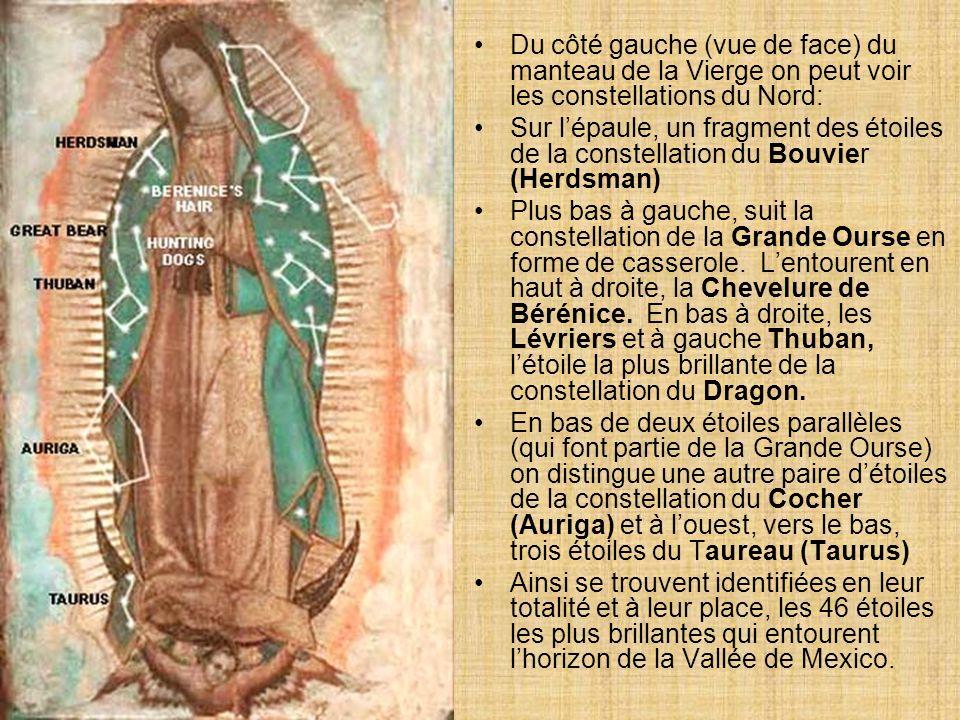 Sur le côté droit (vue de face) du manteau de la Vierge, les constellations sud sont indiquées. En haut, se trouvent quatre étoiles qui font partie de