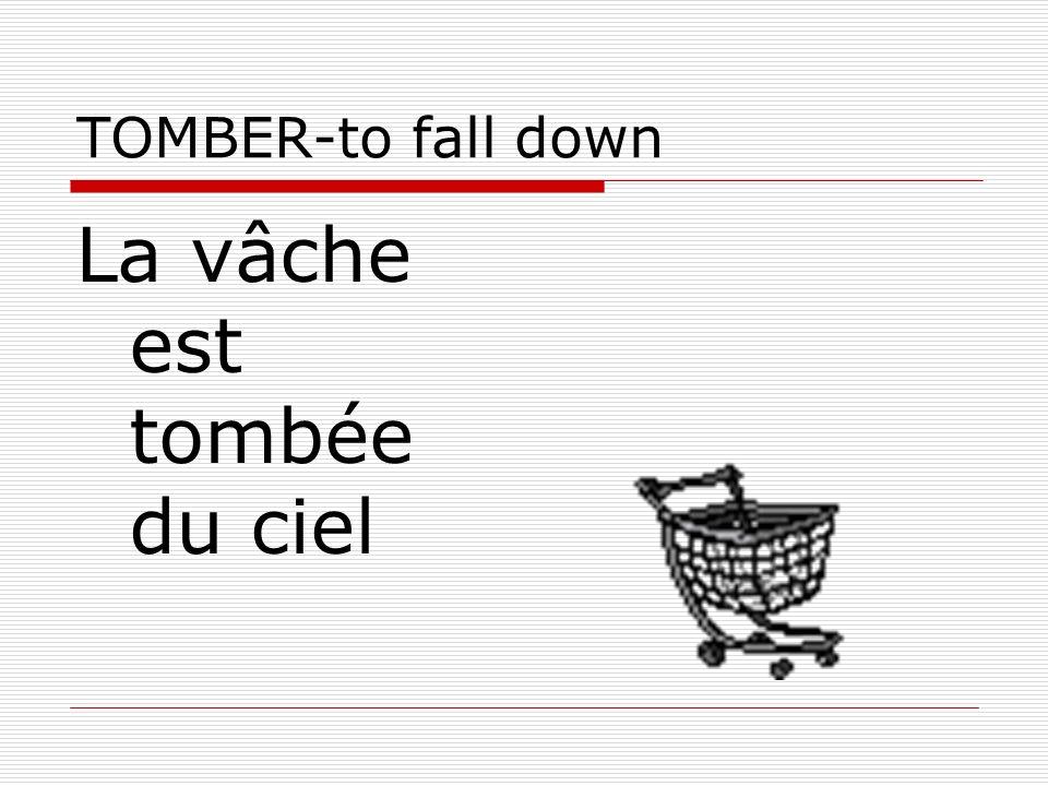 TOMBER-to fall down La vâche est tombée du ciel