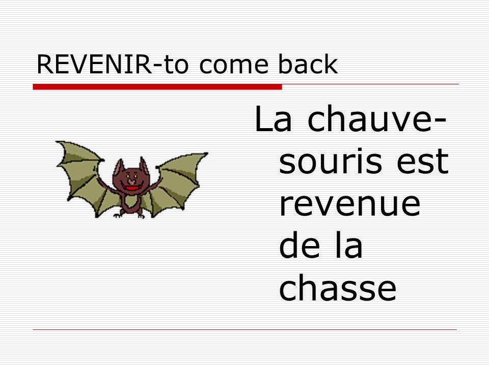REVENIR-to come back La chauve- souris est revenue de la chasse