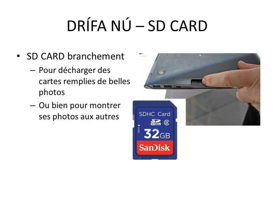 SD CARD branchement – Pour décharger des cartes remplies de belles photos – Ou bien pour montrer ses photos aux autres DRÍFA NÚ – SD CARD