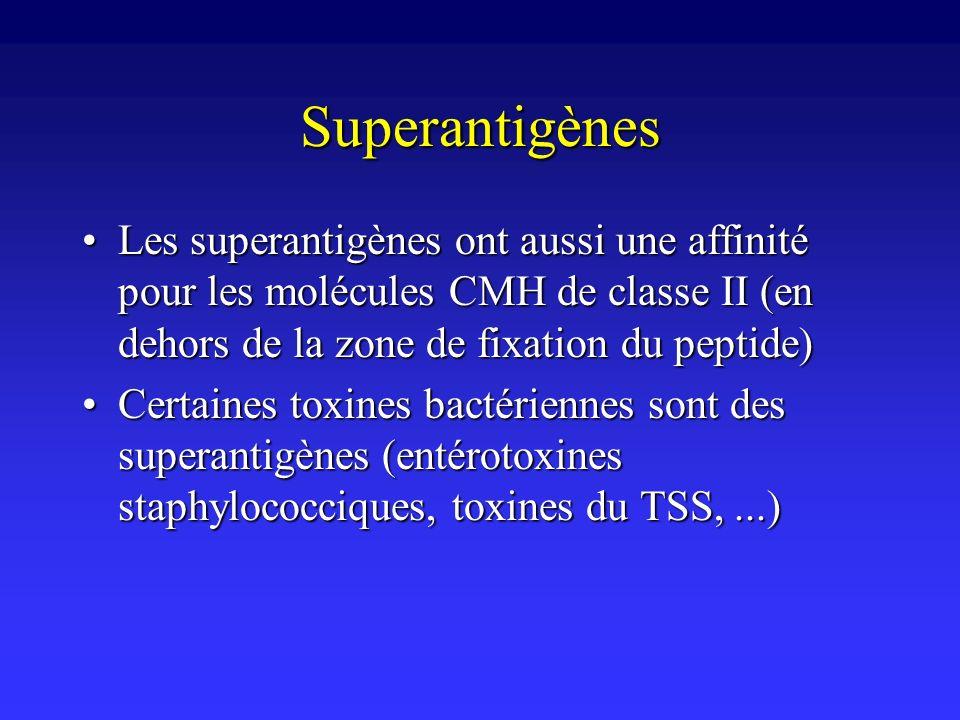 Superantigènes Les superantigènes ont aussi une affinité pour les molécules CMH de classe II (en dehors de la zone de fixation du peptide)Les superant