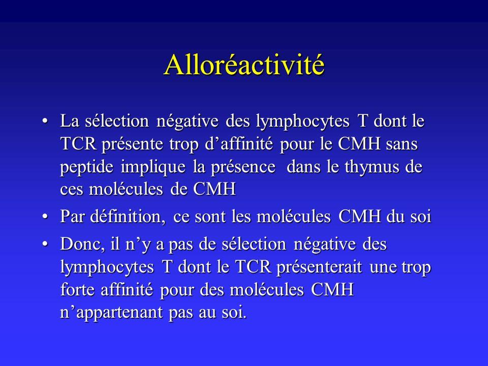 Alloréactivité La sélection négative des lymphocytes T dont le TCR présente trop daffinité pour le CMH sans peptide implique la présence dans le thymu