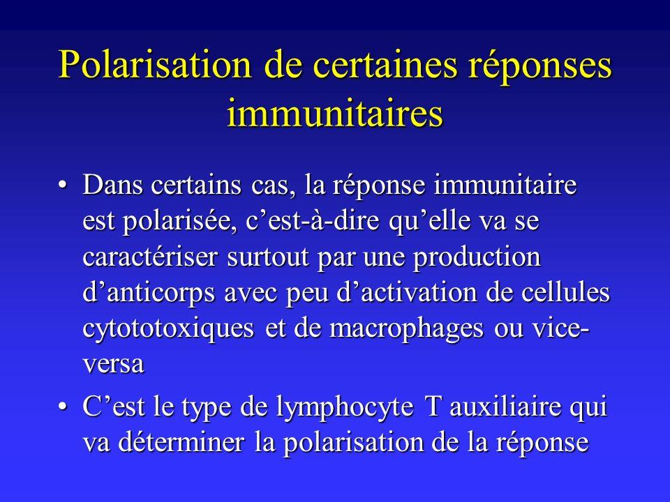 Polarisation de certaines réponses immunitaires Dans certains cas, la réponse immunitaire est polarisée, cest-à-dire quelle va se caractériser surtout