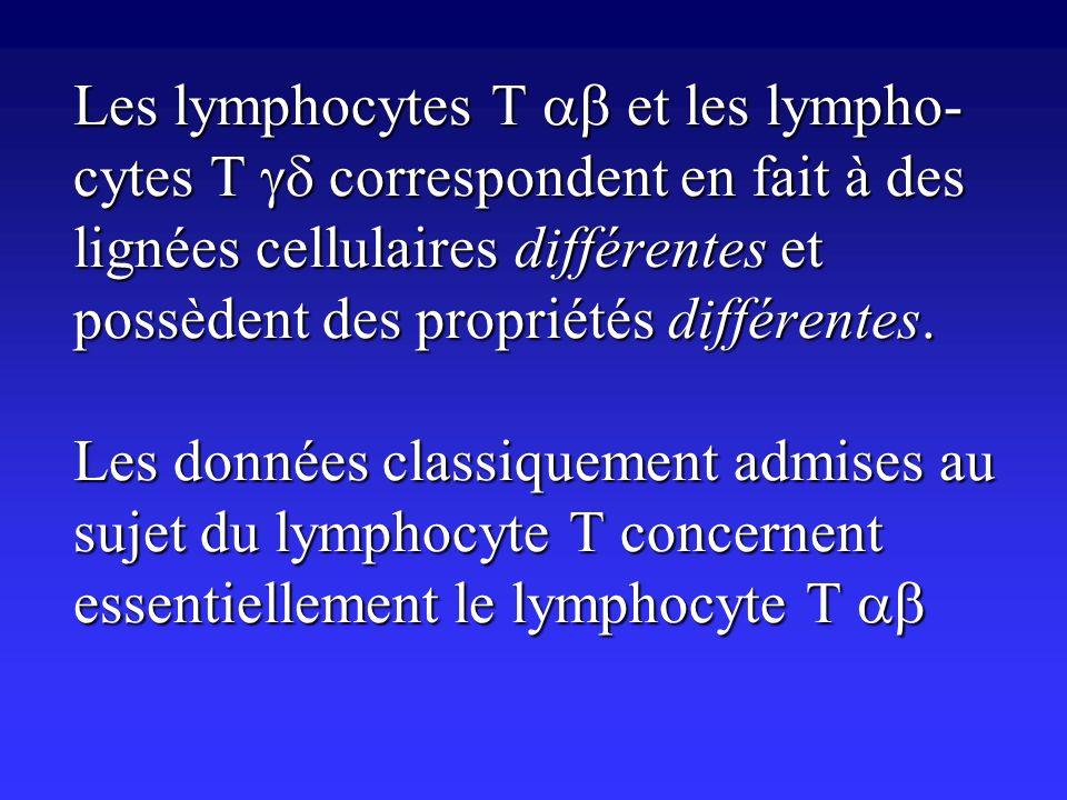 Les lymphocytes T et les lympho- cytes T correspondent en fait à des lignées cellulaires différentes et possèdent des propriétés différentes. Les donn