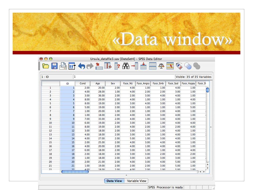 «Data window»